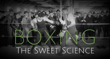 Boxing Sweet Science 2